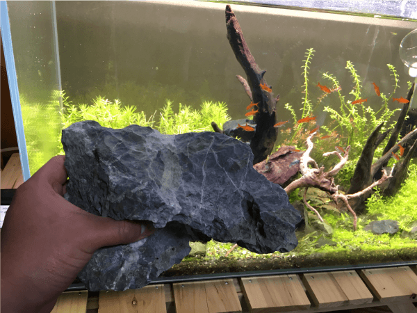 大磯砂利水槽にいれていた石