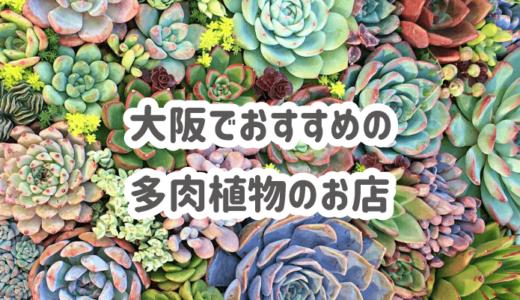 【多肉植物】大阪でおすすめのお店3選と行ってみた感想