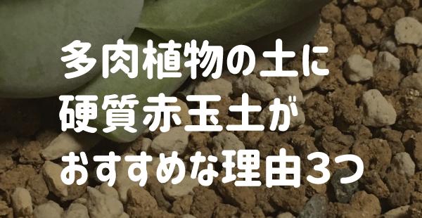 多肉植物の土に硬質赤玉土がおすすめな理由3つ
