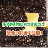 多肉植物におすすめの土と配合