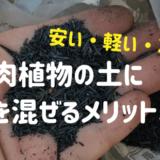 多肉植物の土に炭を混ぜるメリット