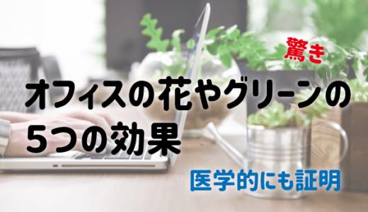 【驚愕】オフィスの花やグリーンの5つの効果|医学的にも証明