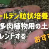 ゴールデン粒状培養土を多肉植物の土に