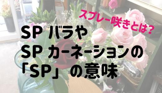 SPバラやSPカーネーションの「SP」の意味|スプレー咲きとは。