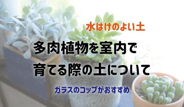 多肉植物を室内で育てる際の土