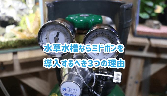 水草水槽ならミドボンを導入するべき3つの理由