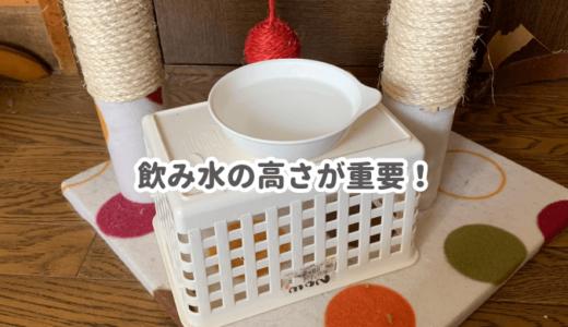 猫が容器で水を飲まないのは高さが原因かも!