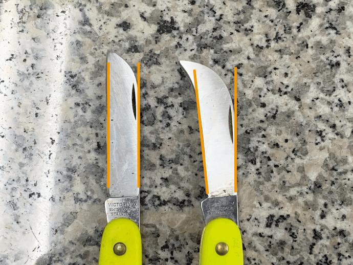 刃の向きが切りやすい