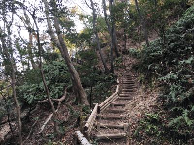 ほしだ園地の吊り橋までの道のり