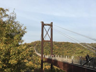 ほしだ園地の吊り橋1