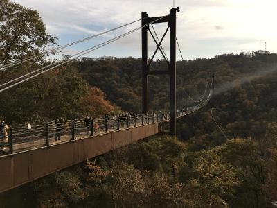 ほしだ園地の吊り橋2
