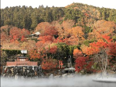 勝尾寺の境内の様子2