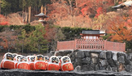 【勝尾寺の紅葉】のんびり過ごせる、大阪の紅葉でおすすめのスポット!
