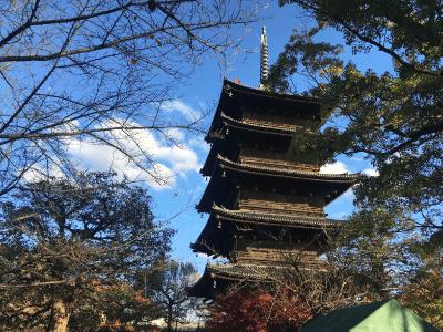 東寺の境内の様子1