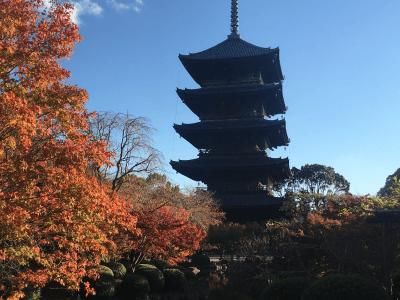 東寺の境内の五十塔