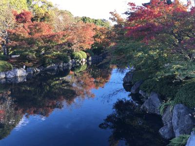 東寺の境内の川